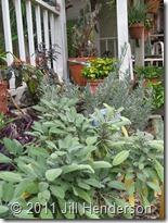 Herb Garden (4)