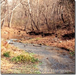 2001 - 11 - Althea Spring near N Fork of the White River