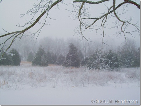 2008-2  Winter Ice Storm (5)