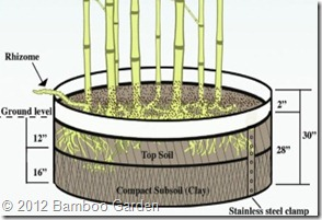 planting with barrier