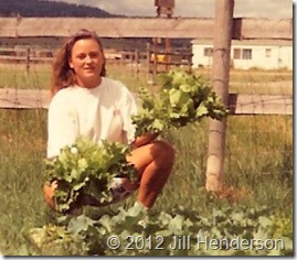 1992  New lettuce. © 2012 Jill Henderson