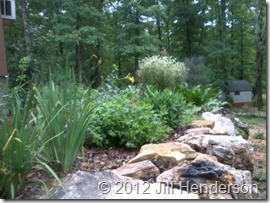 Our new garden. © 2012 Jill Henderson