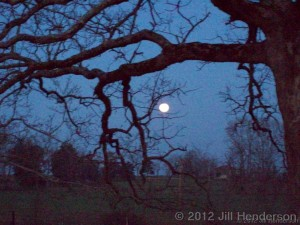 Full Moon copyright Jill Henderson 2012