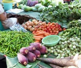 Farmer's Market - Copyright Jill Henderson