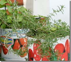 Creative containers for indoor herbs.