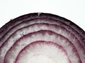 onion 'rings'