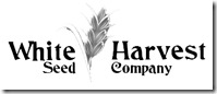 white harvest seed co logo