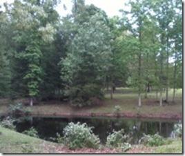 peeper pond
