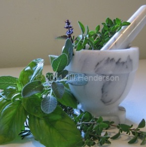 Mortar and Pestel with Herbs © 2013 Jill Henderson