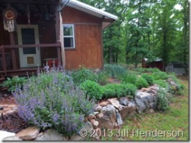 The Herb Garden © 2013 Jill Henderson
