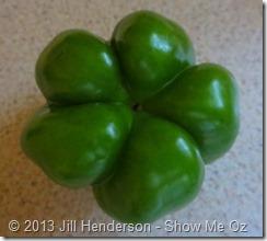 5-lobed bell pepper © 2013 Jill Henderson - Show Me Oz