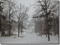2013 12-5 Winter Storm (19)