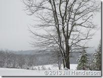 2013 3-22 Spring Snow (17)
