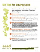 six tips for saving seed - by seed matters