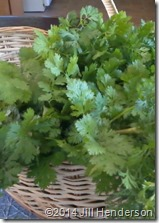 Cilantro is best fresh or freshly frozen.