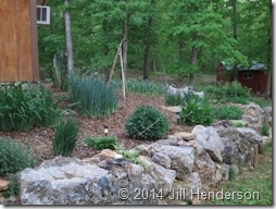 By mulching in fall, garden beds will look their best and keep weeds at bay.  copyright Jill Henderson