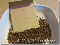 Drying and storing seed.