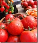 Demystifying Tomato Sizes - ShowMeOz.wordpress.com