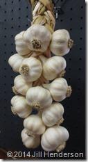 2014 6-30 How to braid garlic 2 (26)