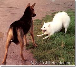 1991-3 - Missoula, MT - Tiny and Milo