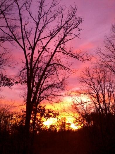 2012 11-15 Sunset (4).jpg
