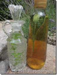 Herbal Vinegars (1)